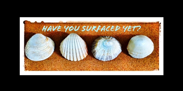 Have you surfaced yet?